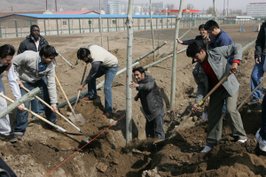 Hebei North University Students Participate in The New Campus Tree Planting Activities
