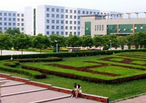 New Zealand Chinese Medical College Visits